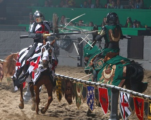 Medieval Times image